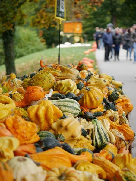 pumpkin-festival-ludwigsburg-12