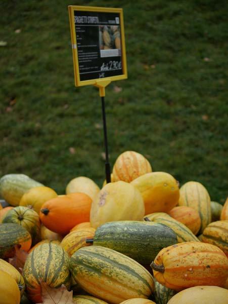 pumpkin-festival-ludwigsburg-16