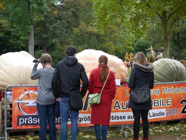 pumpkin-festival-ludwigsburg-26
