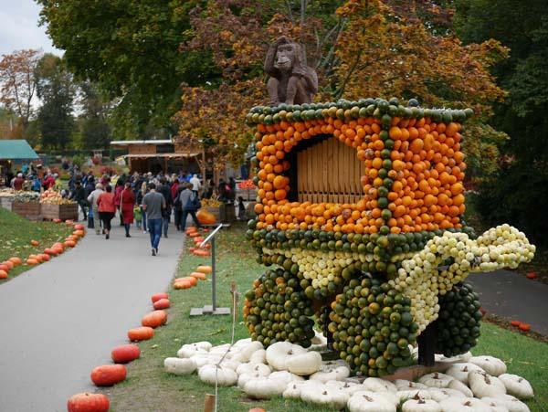pumpkin-festival-ludwigsburg-8