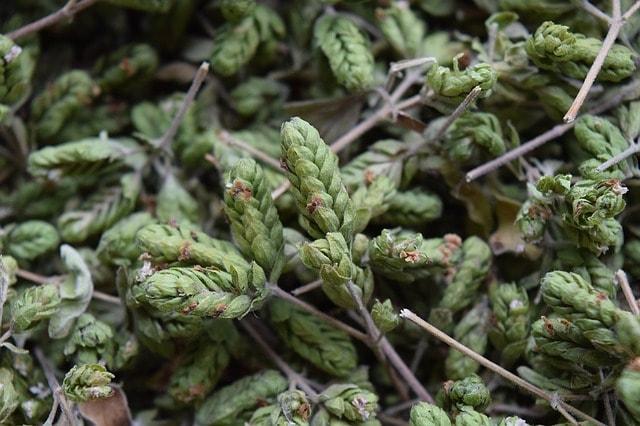 herbs-de-provence-recipe