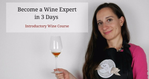 Become a wine expert in 3 days